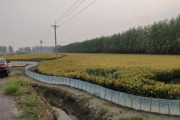 河蟹加工厂区图片