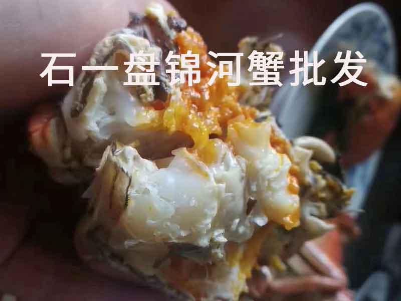 盘锦河蟹好吃吗?
