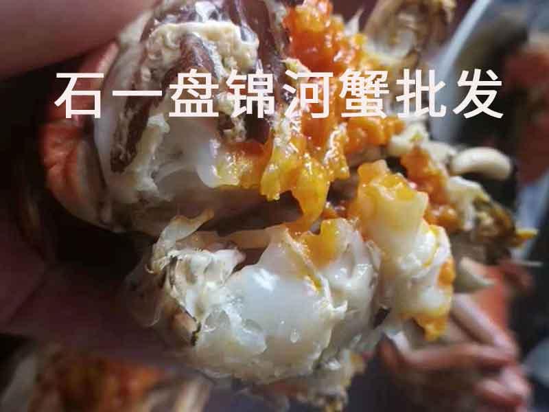 盘锦河蟹多大的最好?