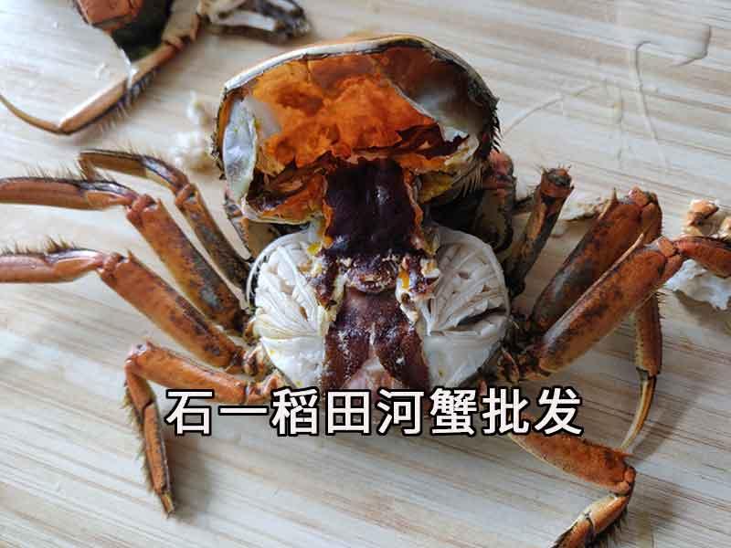 盘锦河蟹多大的好吃?一斤有几只?