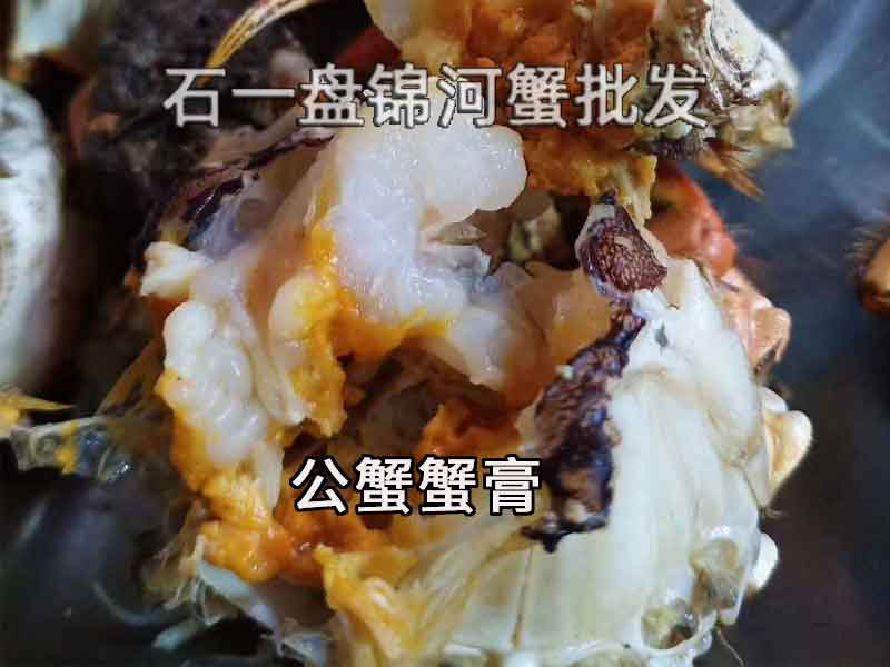 公蟹好吃还是母蟹好吃