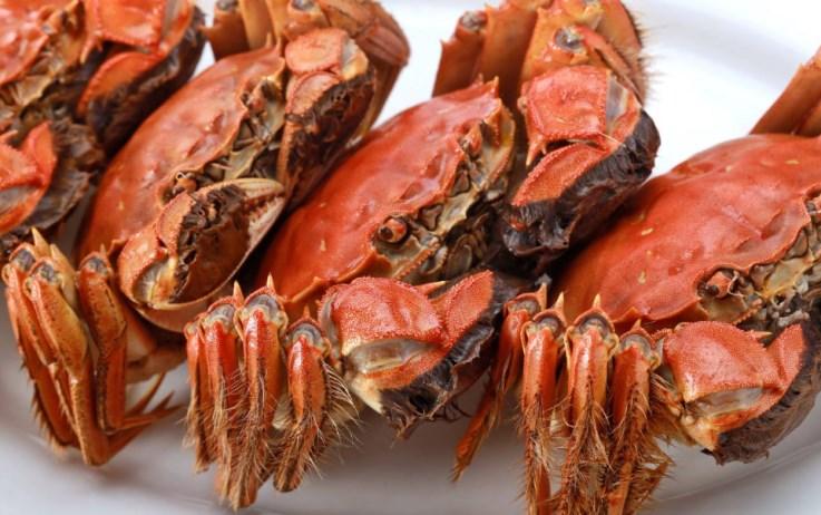 花大价钱买的河蟹可能不是正宗的