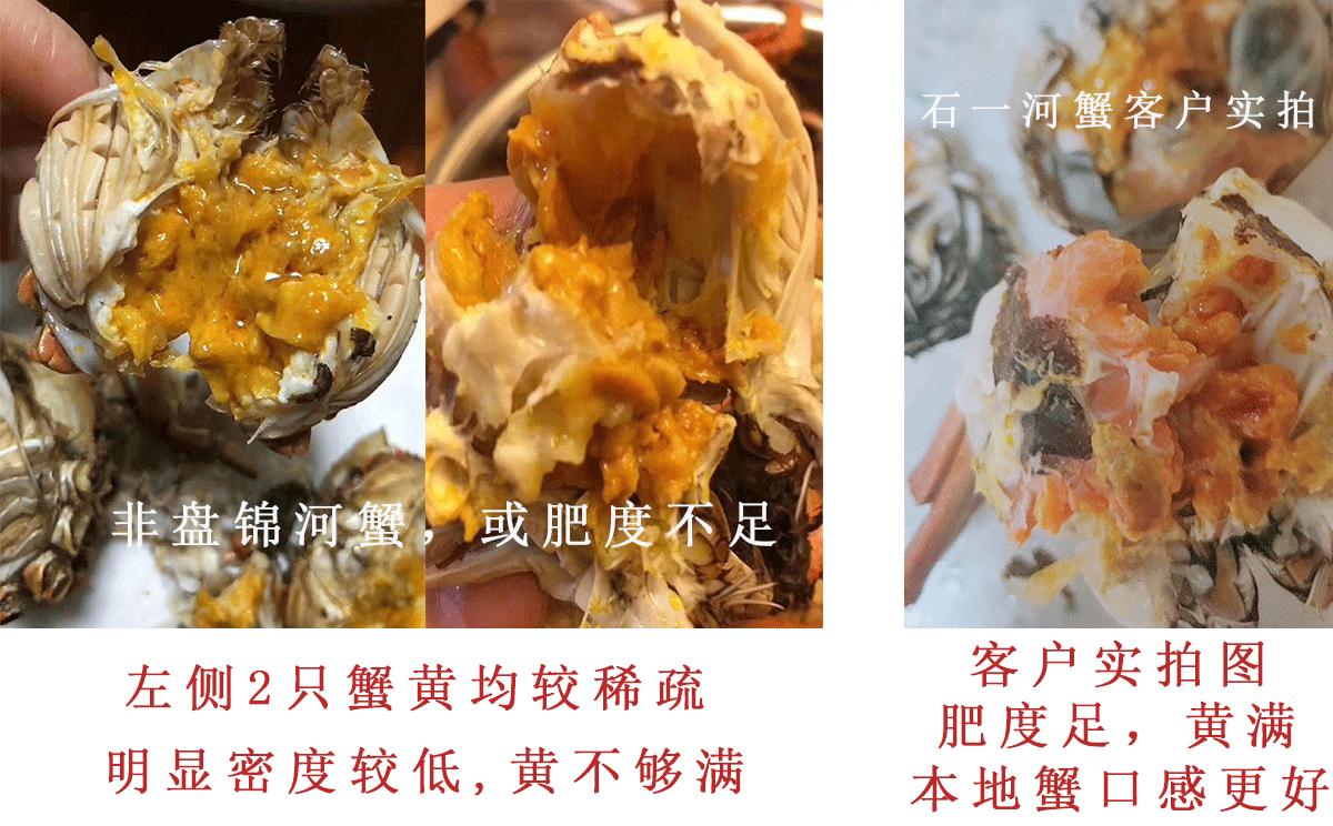 盘锦河蟹养殖基地图片