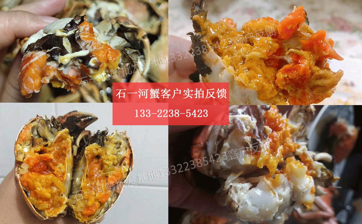 盘锦河蟹客户实拍图片